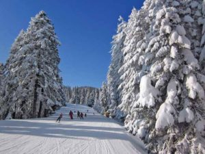 Ski Destinations In Bulgaria Offer Very Good Conditions Order You Winter Vacation To Be Of Full Value Unforgettable And Positive Emotions