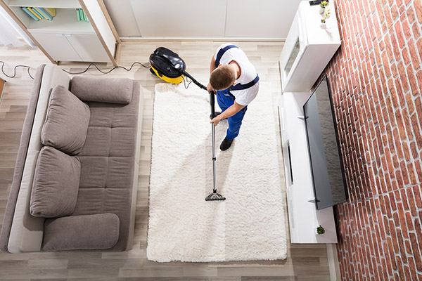 How to clean the carpet in-depth